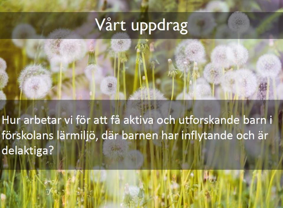 Skärmbild (11)